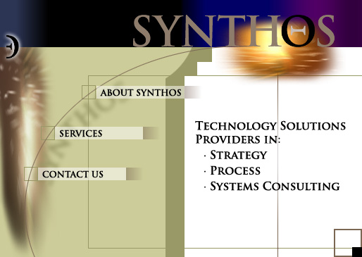 Strategy Process and Systems Consulting